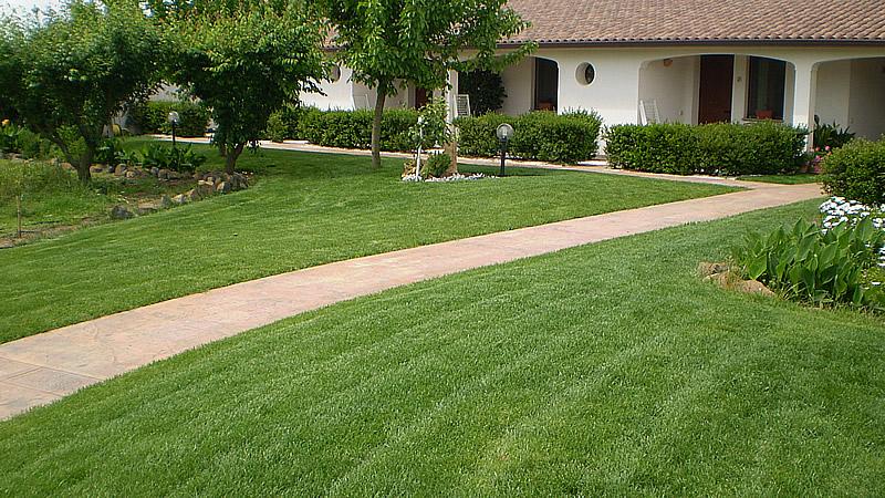 prato verde, tappeto erboso , sfalcio erba , ditta verde impianti Oristano